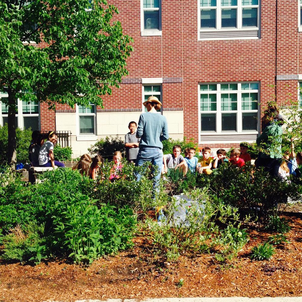 Dallin Elementary School Butterfly Garden