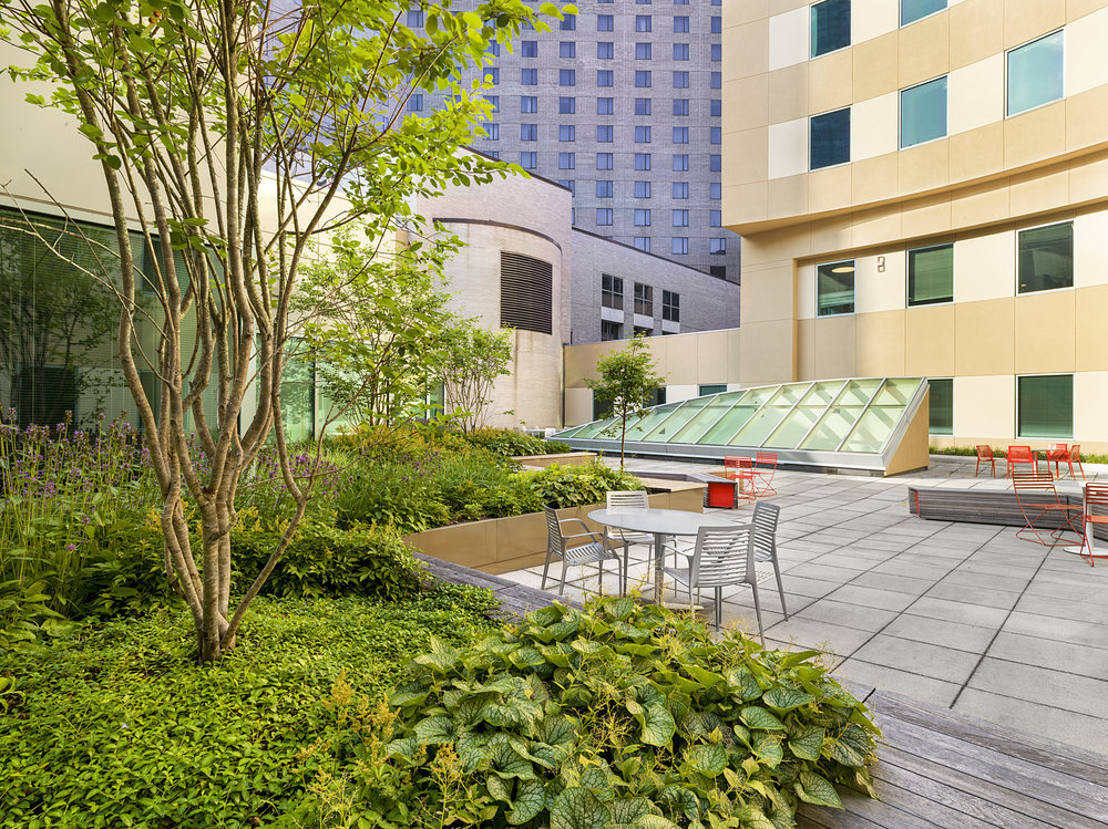 Recover-Green-Roofs-0011.jpg