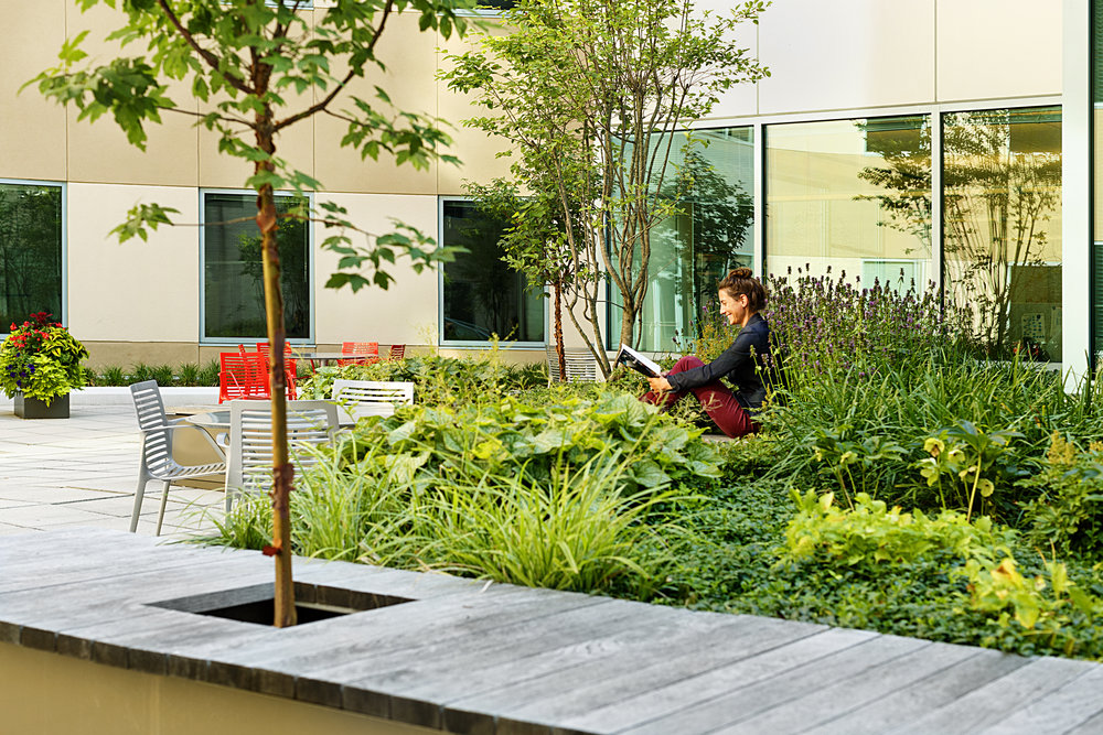 Recover-Green-Roofs-0017.jpg