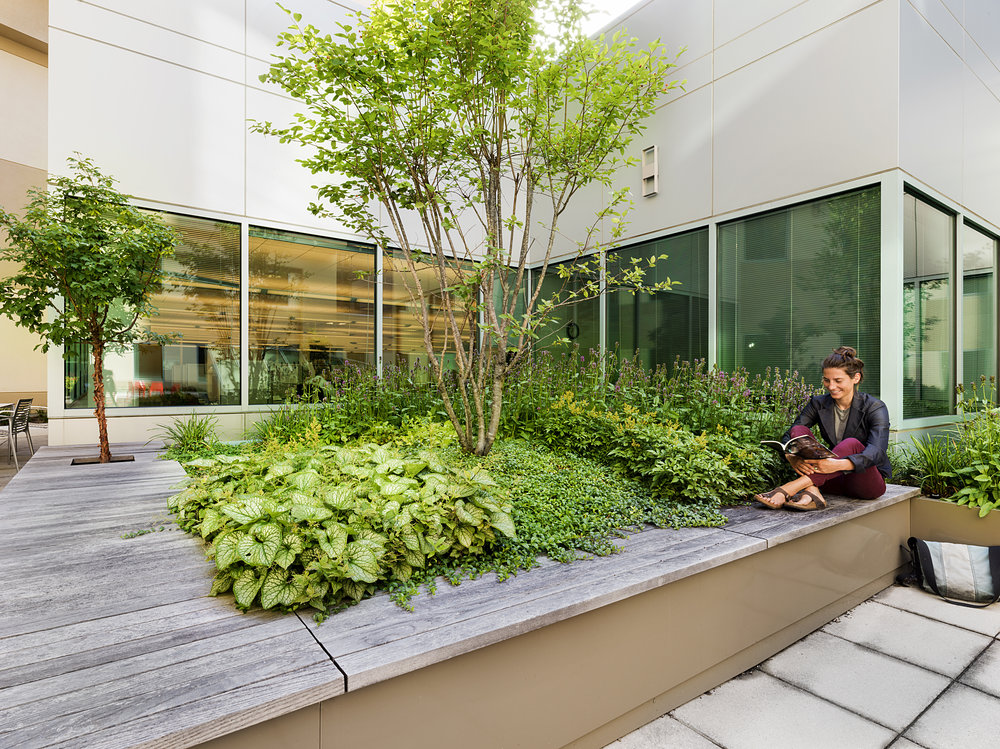 Recover-Green-Roofs-0022.jpg
