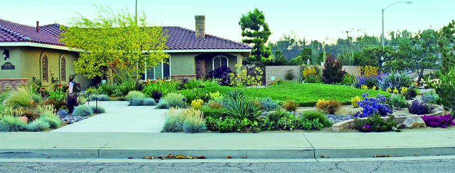 Note: What looks like lawn is actually  Myoporum parvifolium . Image  © Inland Empire Landscape Contest