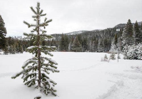 BkWater_04_snow.jpg