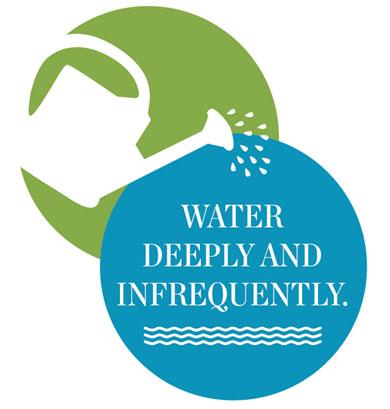 waterdeeply.jpg