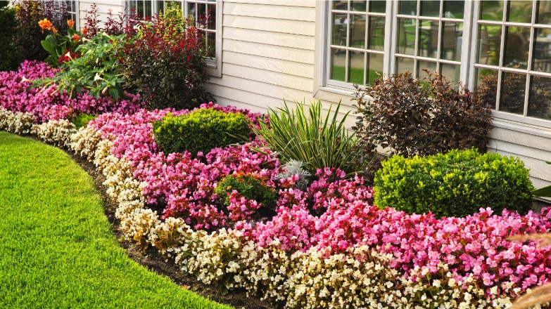 Photo of flower beds in a residential backyard