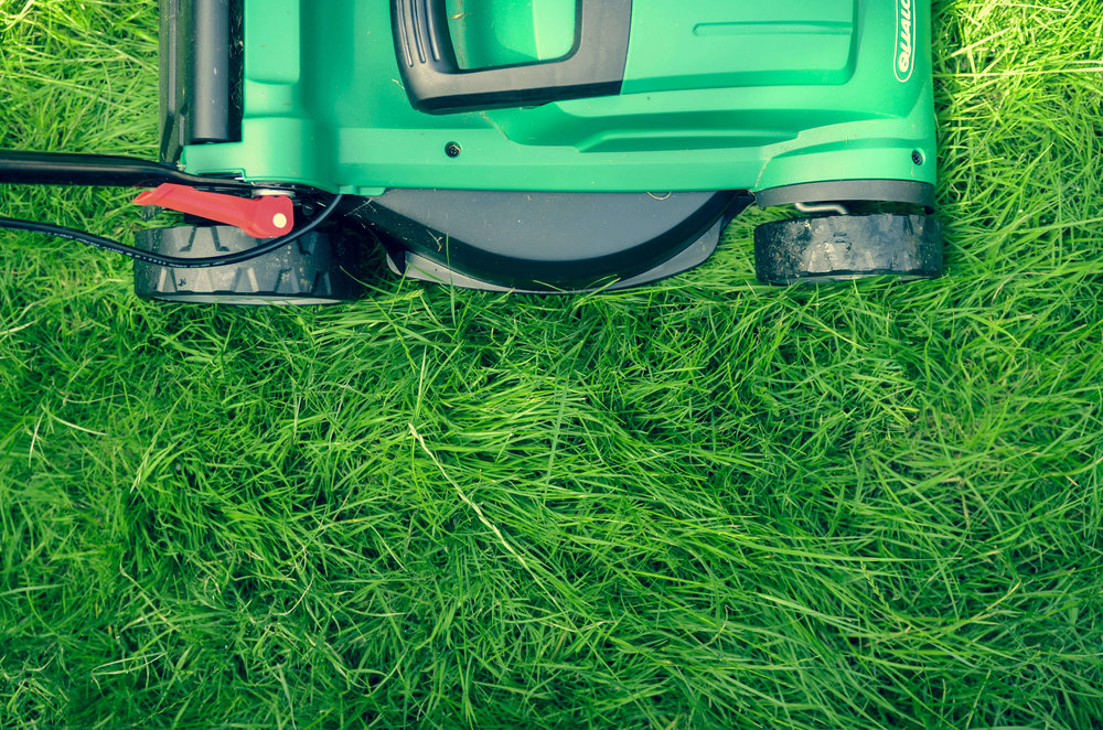 Top-down photo of mower over grown out grass