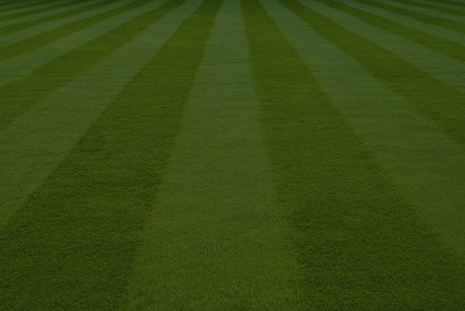 lawnx.jpg