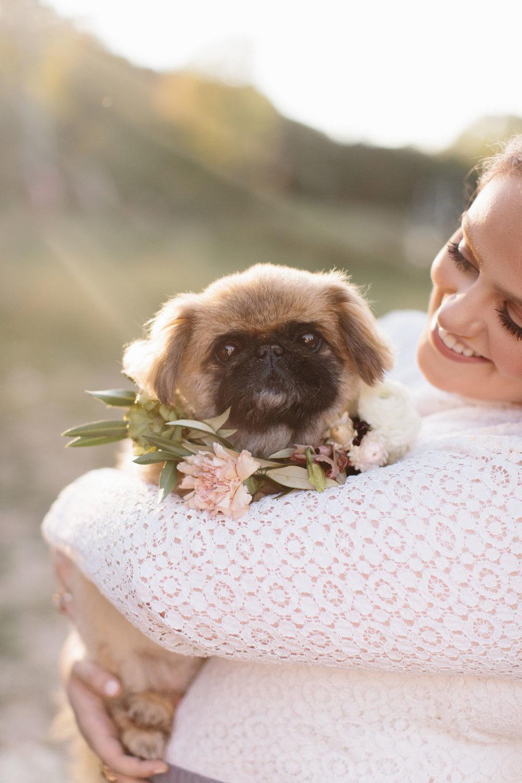 KaseStyles-DogCollar-Florist.jpg