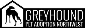 Greyhound Pet Adoption
