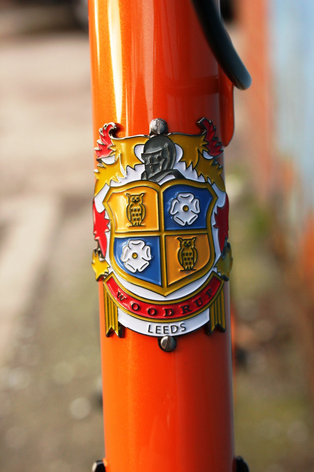 Enamelled head badge