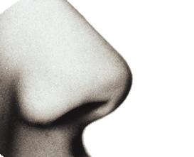 letsblogoff-smell.png