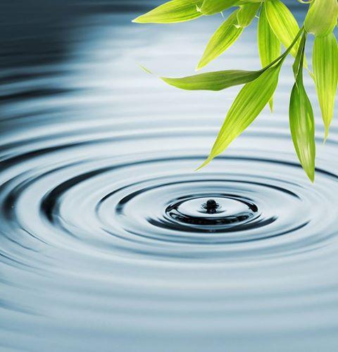 bamboo water drop.jpg