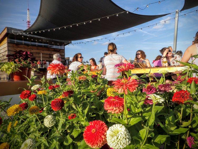 Photo: Urban Harvest STL Food Roof