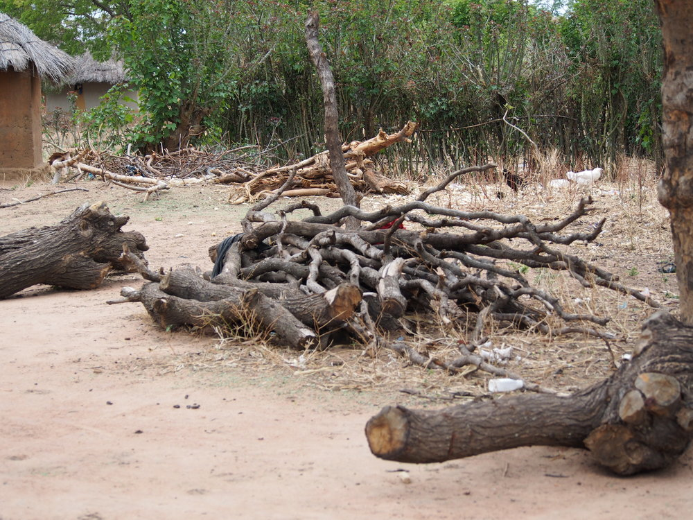 The big wood piles were used by the households for three-stone fire cooking prior to receiving their improved cookstoves. These logs are no longer used by these households.