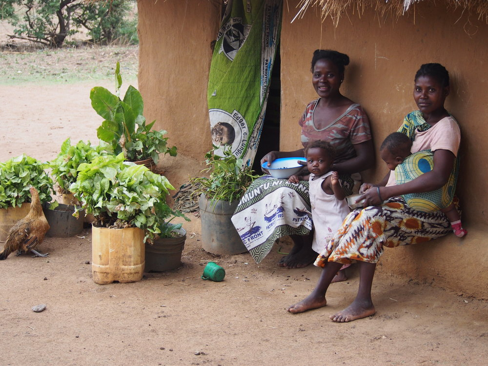 Manchinchi village, Kalindawalo Chiefdom, in the Luangwa Valley, Eastern Zambia