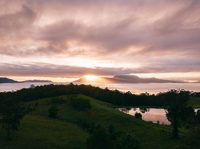 On location a few weeks back filming @katechiffeygray_ Pathway To Peace Retreat 🎥♥️ . . . . . #djimavicpro #newsouthwales #seeaustralia #sunrise #mtwollumbin