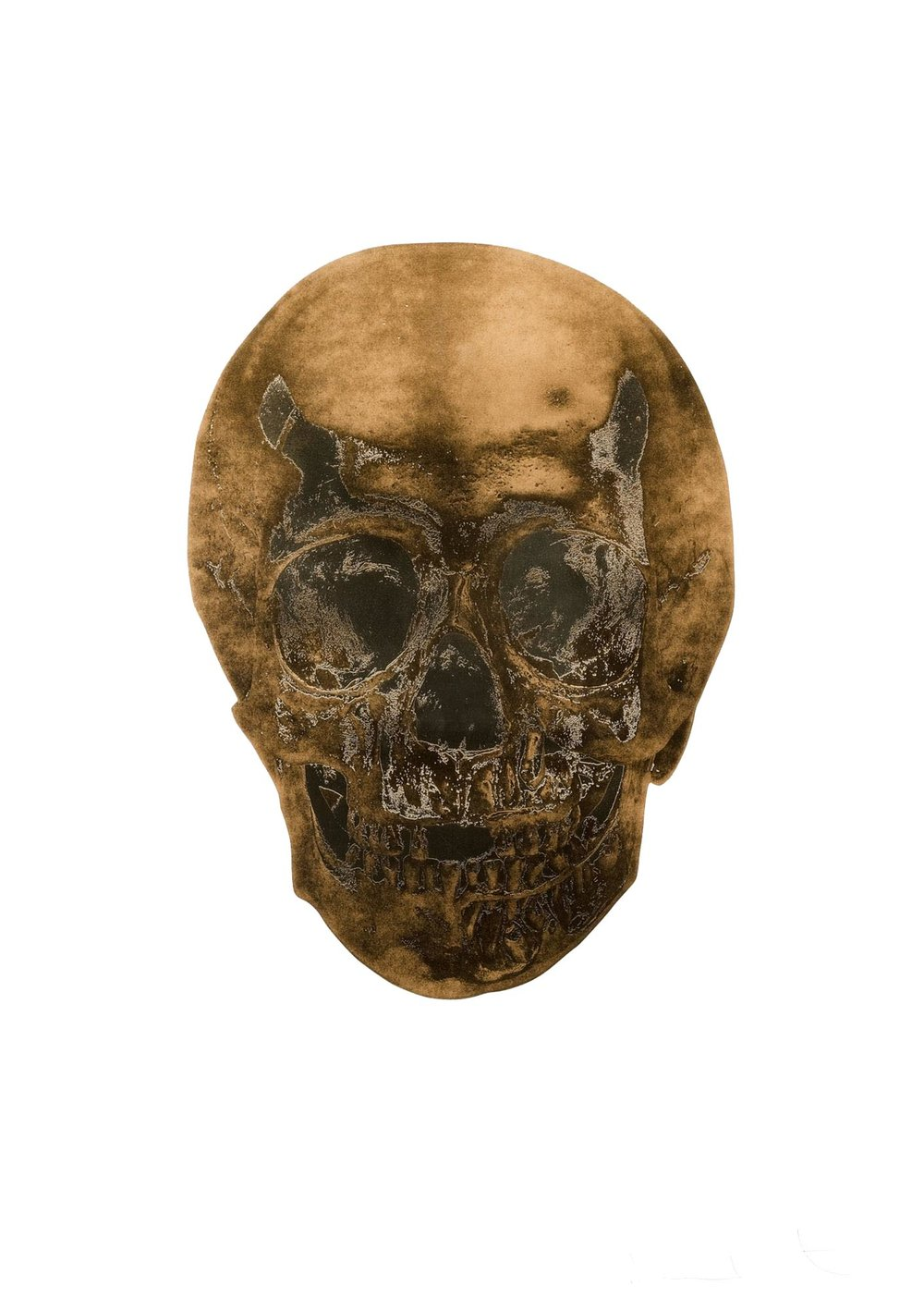 Death or Glory - Damien Hirst