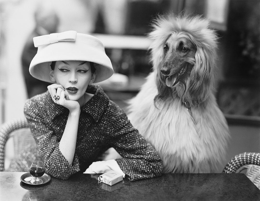 Dovima with Sacha, cloche and suit by Balenciaga, Café des Deux Magots, Paris, 1955. Photograph by Richard Avedon © The Richard Avedon Foundation