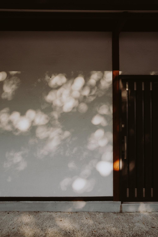 Light by Photographer Marina Denisova on Anniversary Magazine