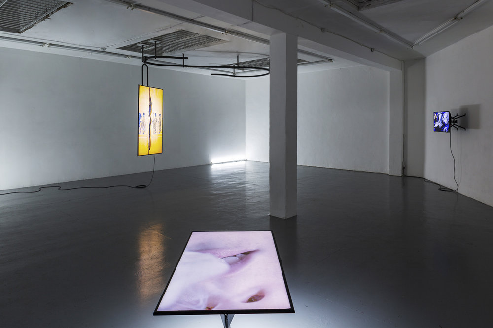 Anna Franceschini. CARTABURRO. 2018. Installation view, ALMANAC Projects, London. Photo by Oskar Proctor. Courtesy of the artist and ALMANAC Projects, London.