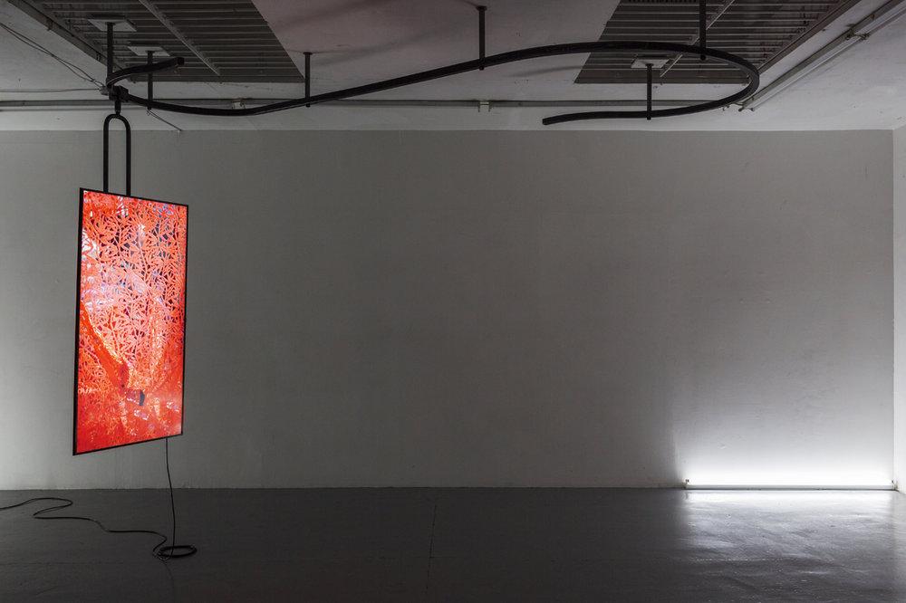 Anna Franceschini. CARTABURRO (POLAROIDS). 2018. Photo by Oskar Proctor. Courtesy of the artist and ALMANAC Projects, London.