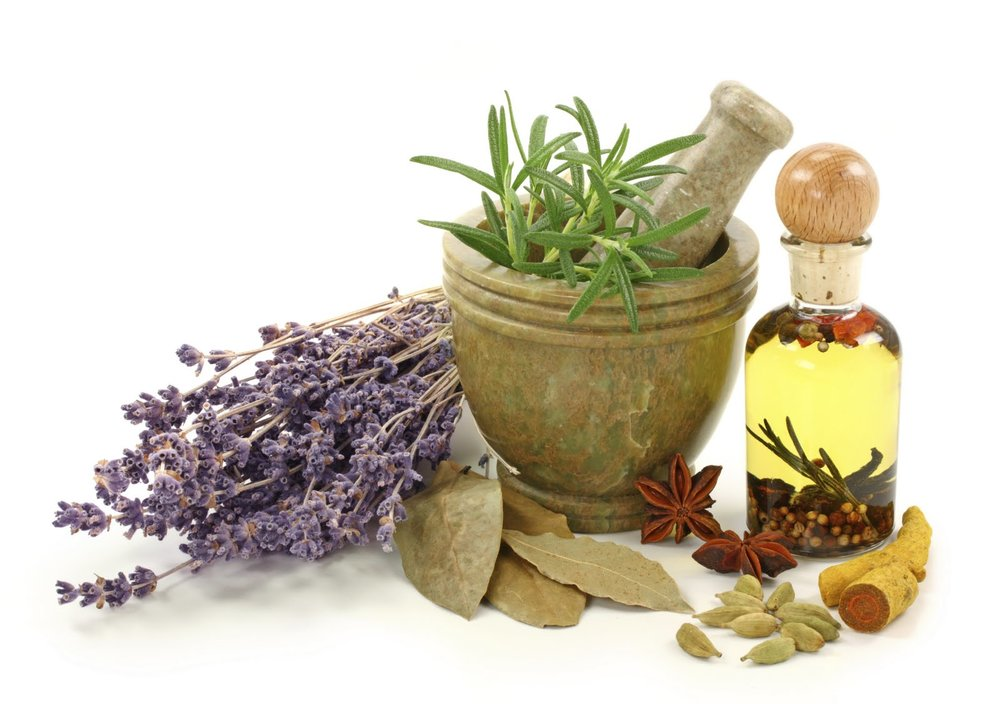 Homeopathy Courses - Enlightening Natural Health Education.jpg