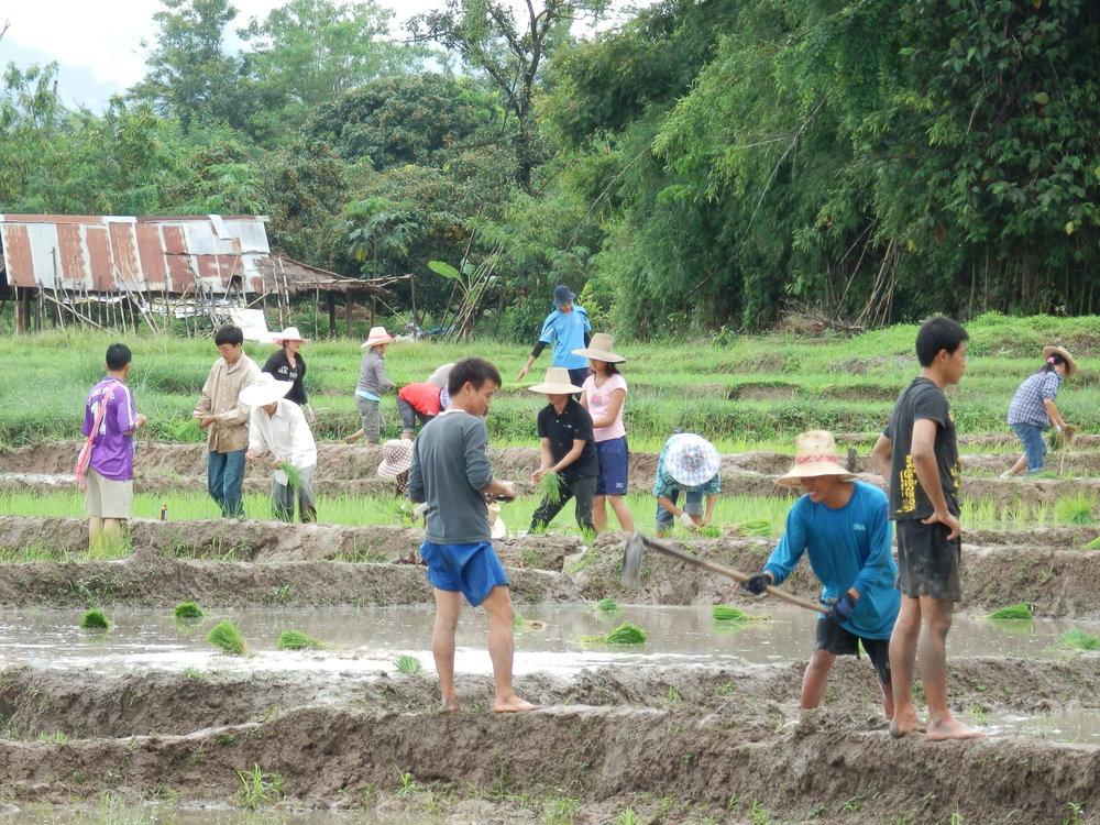 LBI students farming (2).JPG
