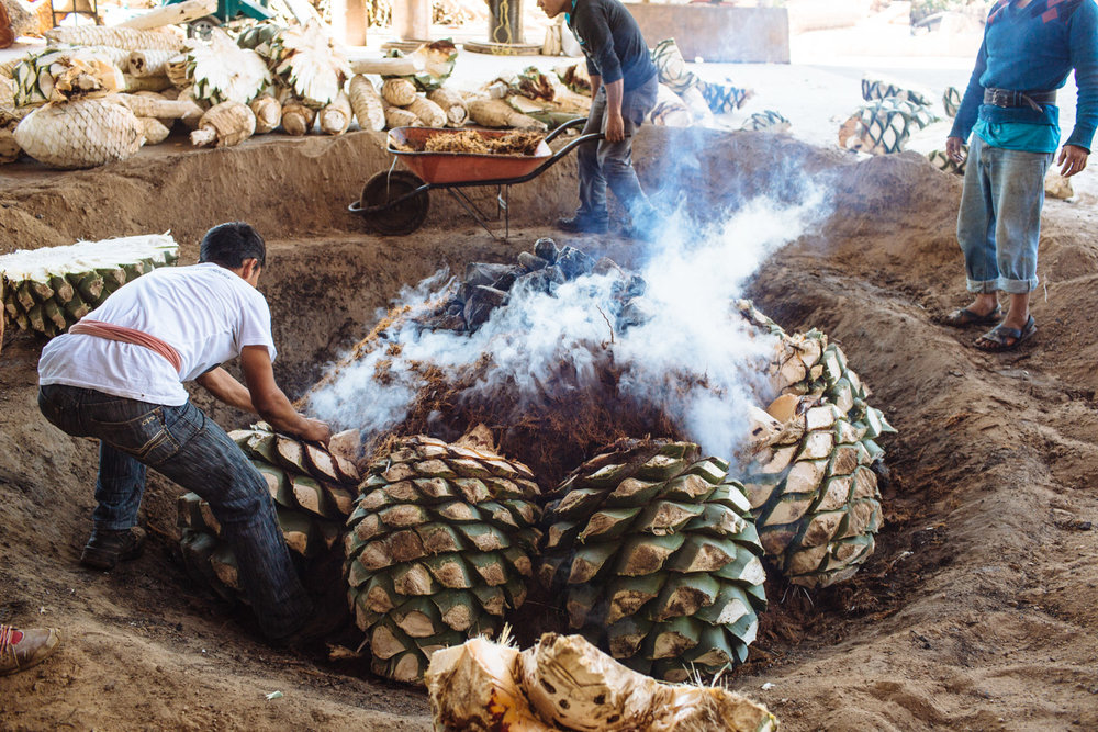 MEZCAL  for Experience Mezcal tours
