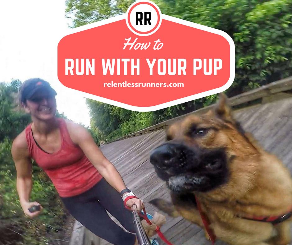 running with dog, run with dog, running with pup,   relentless runners, run coach, coaching