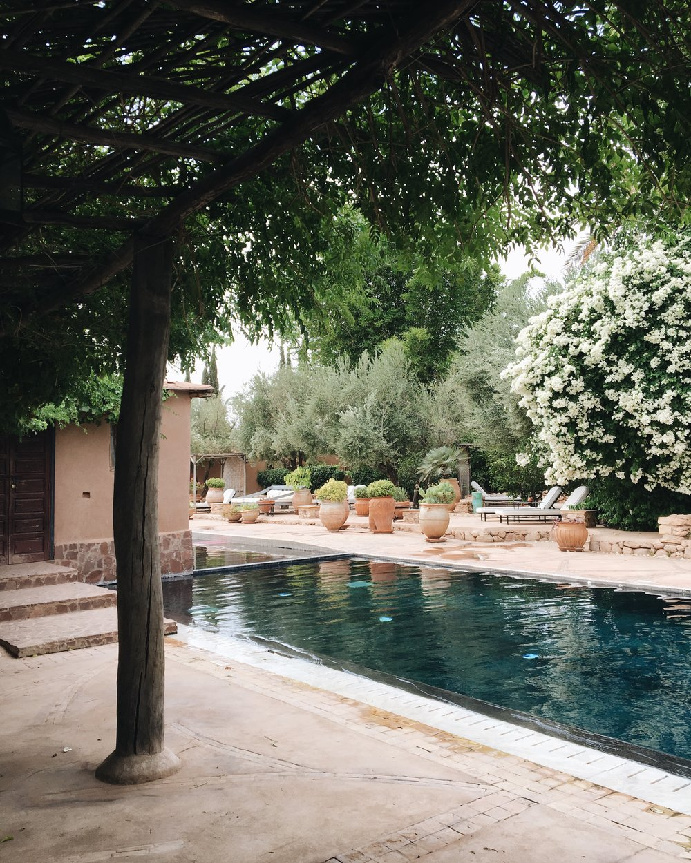 Club Swimming Pool at The Beldi Country Club | Marrakech