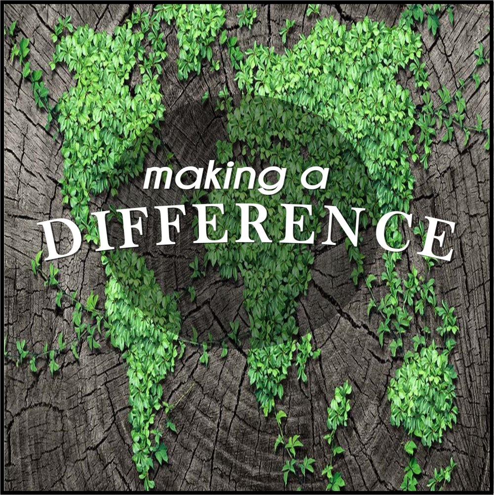 Making a difference picture 2.png.jpg