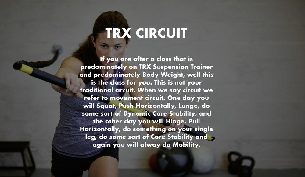 TRX Circuit.jpg