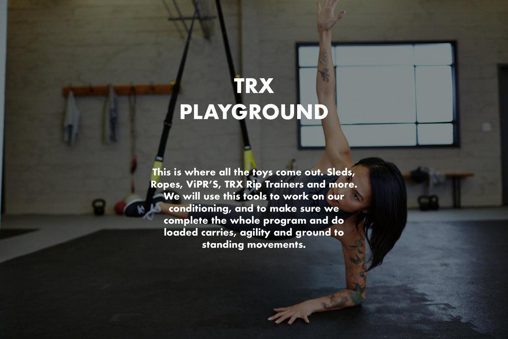 TRX Playground.jpg