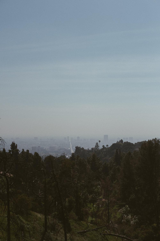 More LA Fuji (8 of 80).jpg