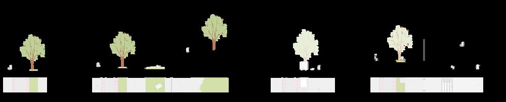 Prinsipp-snitt Klæbuveien:Høgskoleparken og Klæbuveien møtes på ulike måter mellom lamellene, vegetasjonsfeltet langs veien kan brytes opp ved behov og Klæbuveien inviteres inn i den nye bystrukturen med åpne fasader.