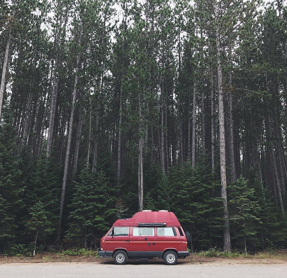 Parc provincial Algonquin-août 2017