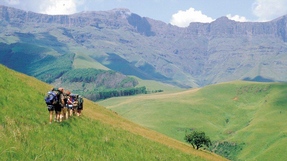 Randonnée sur le Drakensberg - Le drakensberg est mondialement connu pour ses randonnées et son escalade. Les gens viennent de partout dans le monde pour grimper certains des sommets des montagnes.