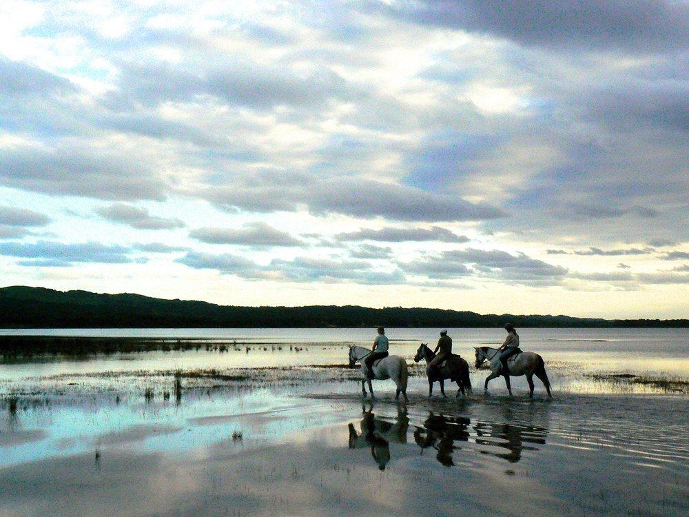 Randonnée à cheval - Monter un cheval sur l'une des belles côtes du KwaZulu Natal.