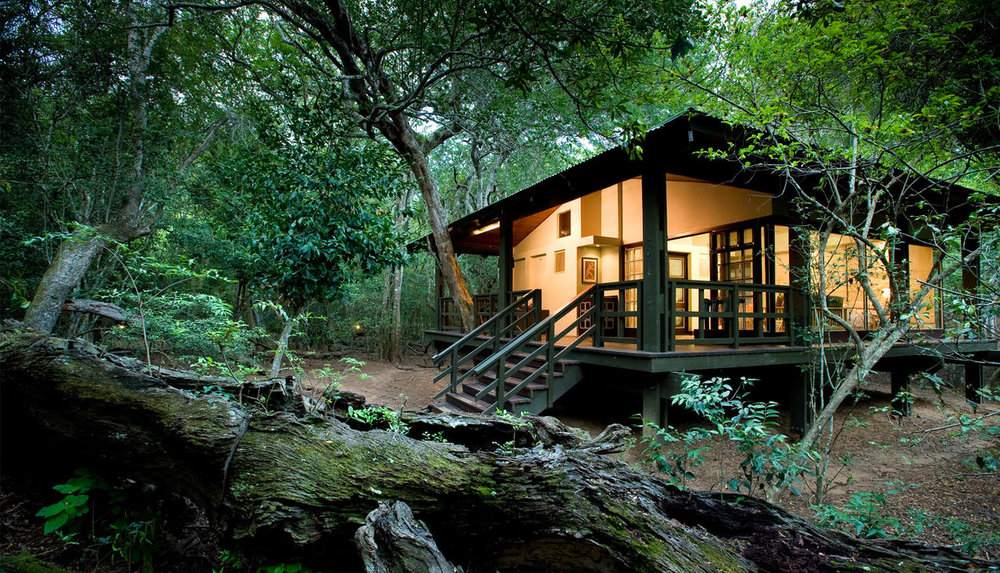 phinda-forest-lodge-room21.jpg