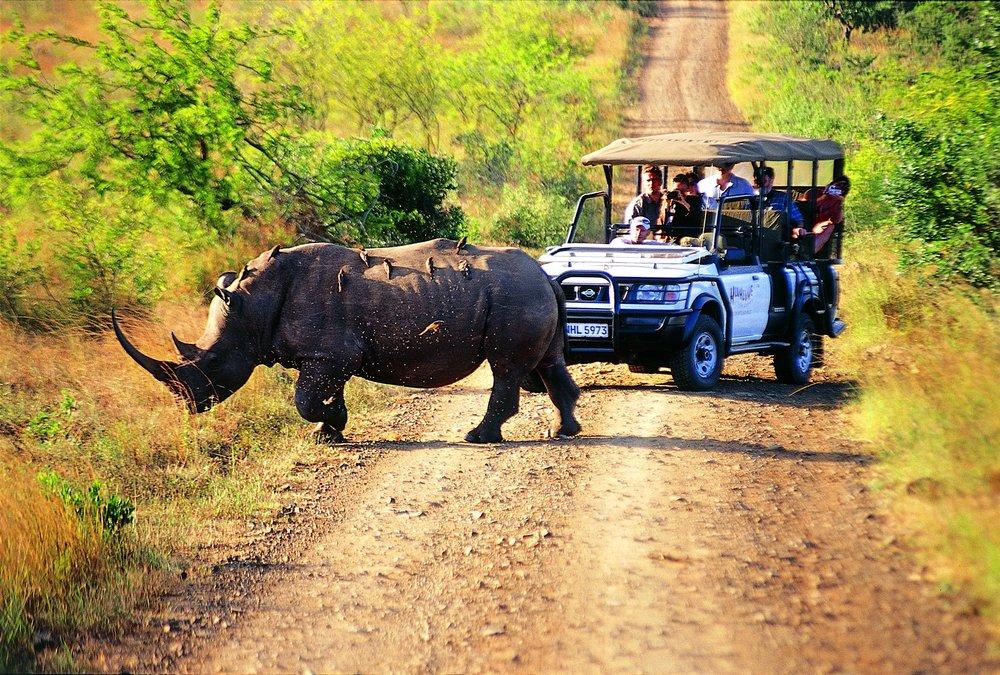 hluhluwe-rhino.jpg
