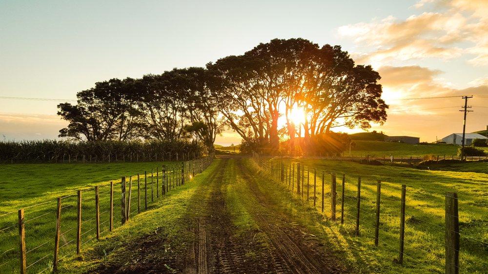 La Route des Jardins -