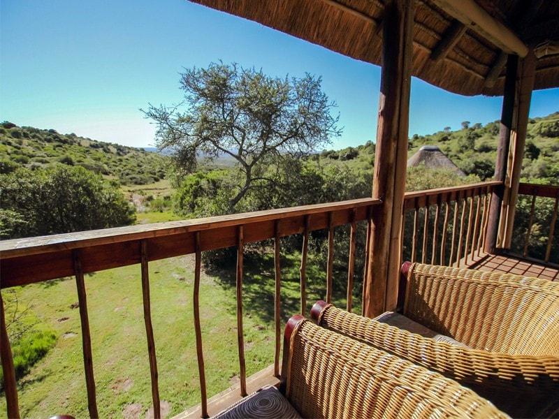 Eastern_Cape_Safari_greater_Addo_Amakhala_Bukela_Exterior19_Mjpeg-min.jpg