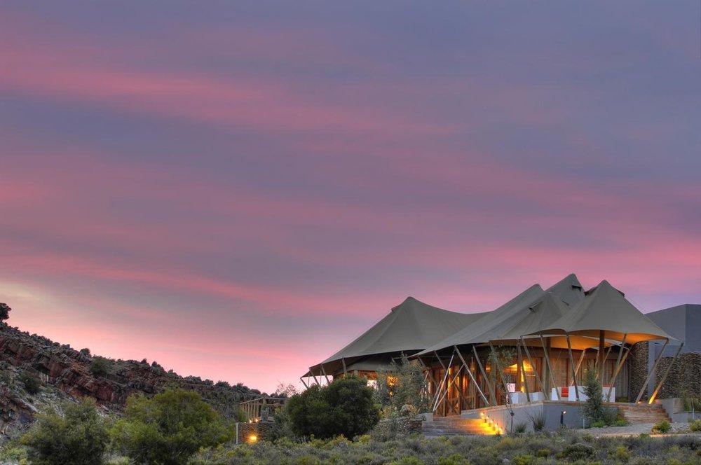 Le Cap - Est-il possible de voir les Big 5 sans trop s'éloigner du Cap? Il y a quelques réserves privés près de Cape Town où les Big 5 peuvent être vu.