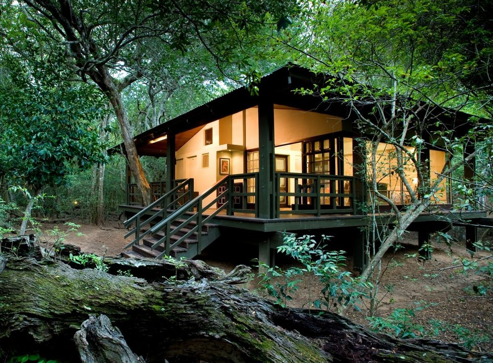 Header-luxury-glass-suite-at-andbeyond-phinda-forest-lodge-on-a-luxury-safari-in-south-africa-1600x900.jpg