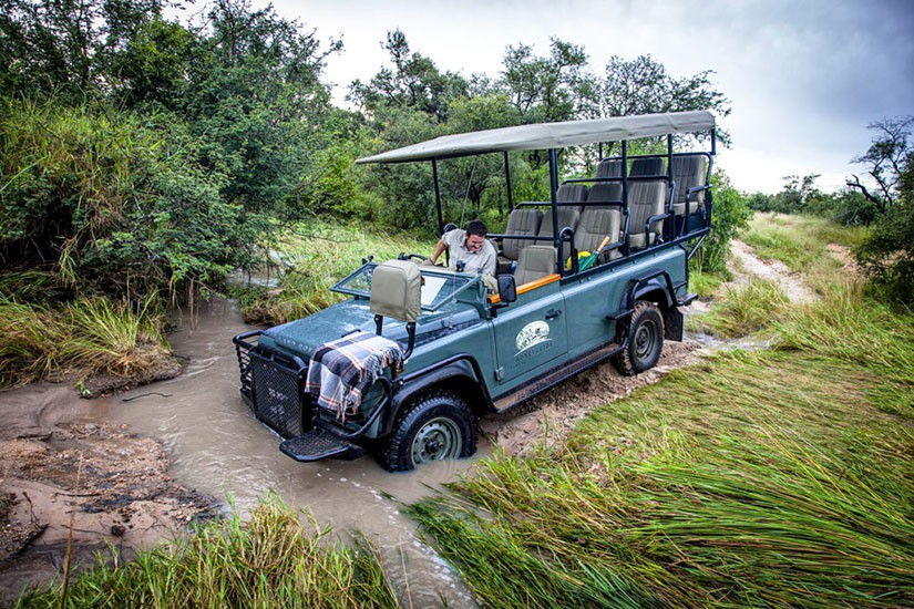 Agence de voyage safari Afrique.jpg