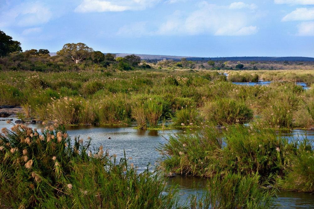 Kruger_National_Park_Landscape_1.jpg