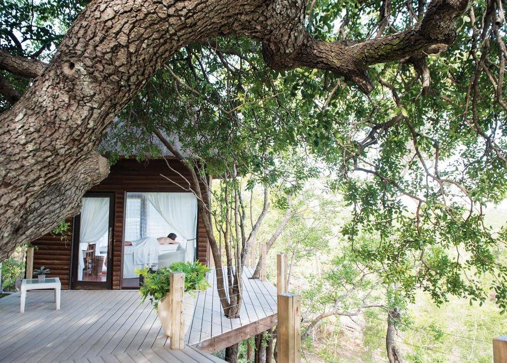 agence_de_voyage_et_safaris_en_afrique_capoupascap_cap_ou_pas_cap_afrique_du_sud_le_parc_national_kruger17leopard hills.jpg