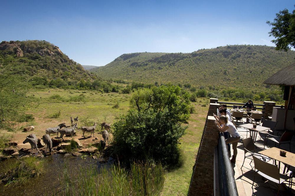 agence_de_voyage_afrique_du_sud_pilansber_reserve_parc_kwa_maritane_afrique_safaris_capoupascap_Cap_ou_pas_cap_voyage_Lodges_Safari9.jpg
