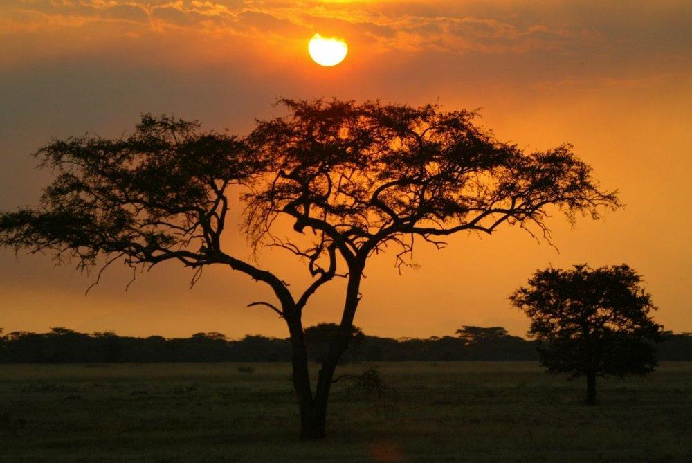 a1 kruger Sunset_0.jpg