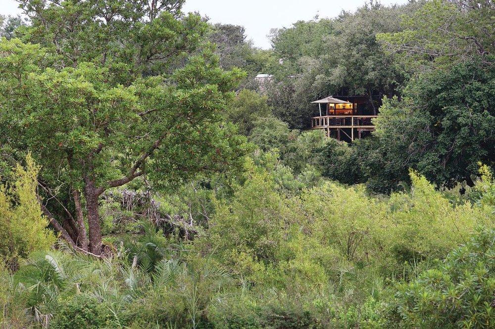 Agence_de_voyages_basée_en_Afrique_Tours_et_voyage_à_Cape_Town_et_les_vignobles_Voyage_de_noces avec_CapOuPasCap_Voyage_Londolozi_Tree_Camp-min.jpg
