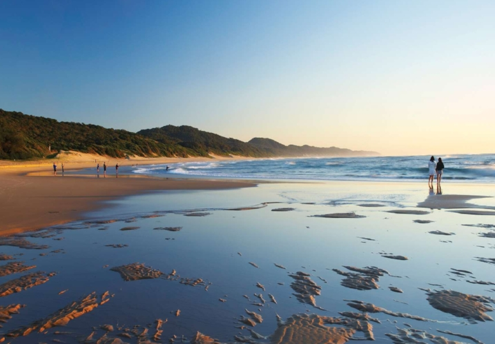 elephant coast.jpg